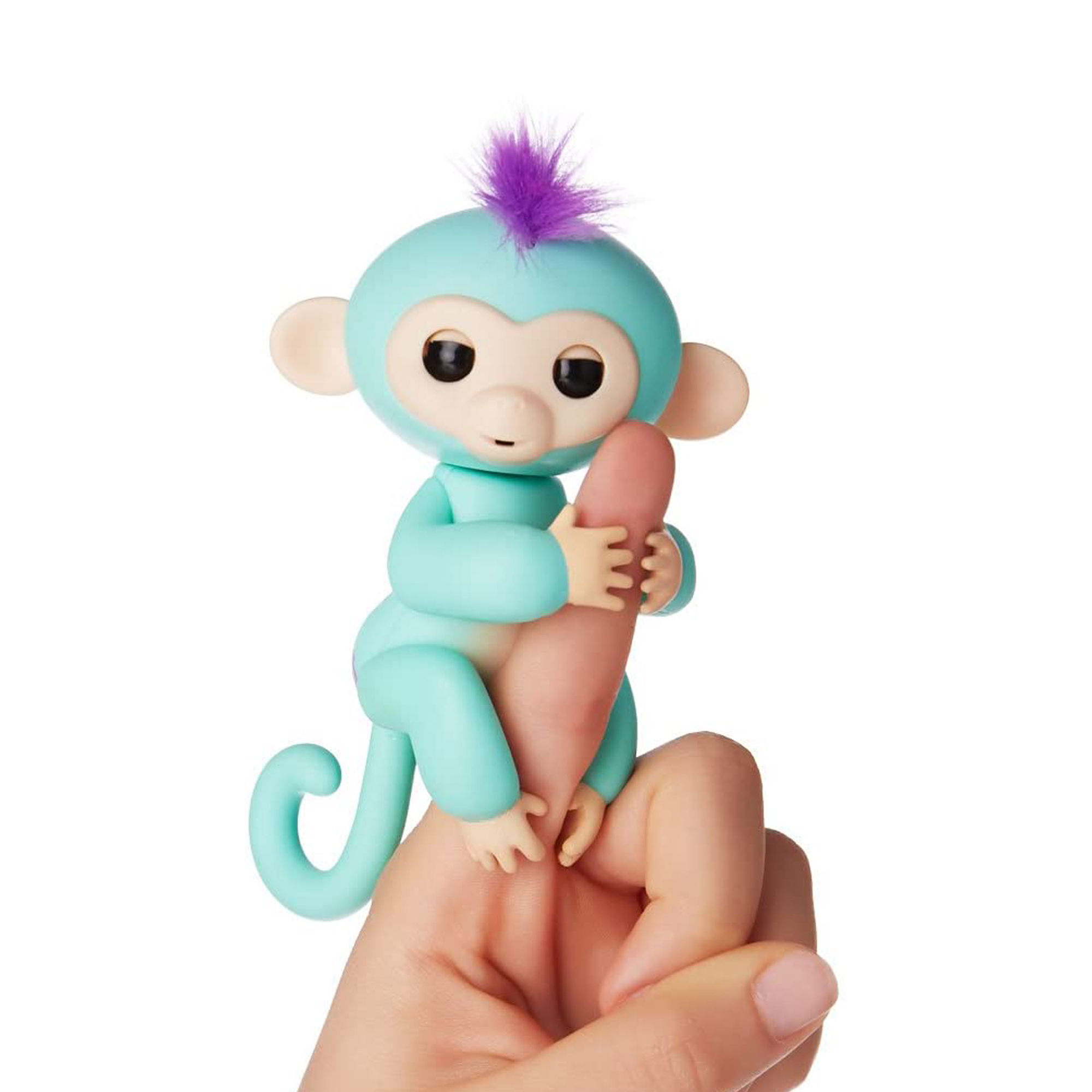 Cenocco CC-9048; Happy Monkey Turquoise